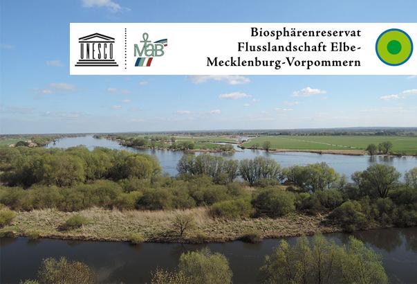 Urstrom Elbe